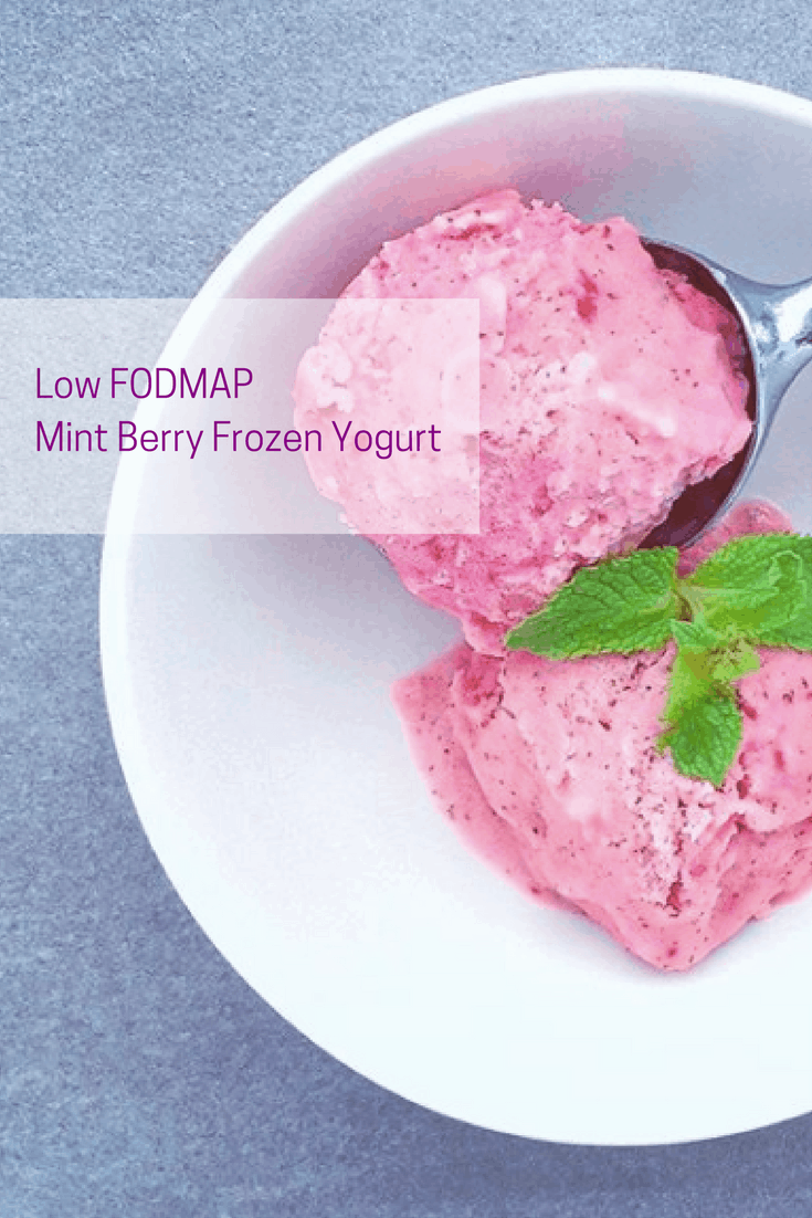 two scoops of low FODMAP mint berry frozen yogurt in bowl with ice cream scoop