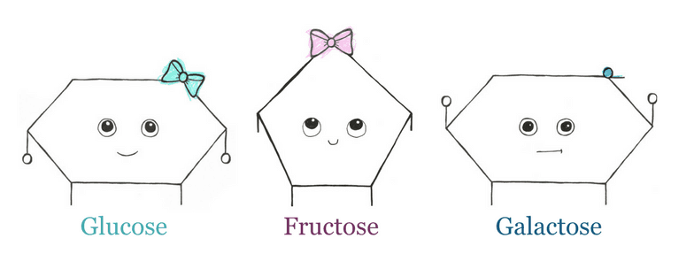 Illustration of glucose, fructose and galactose molecule