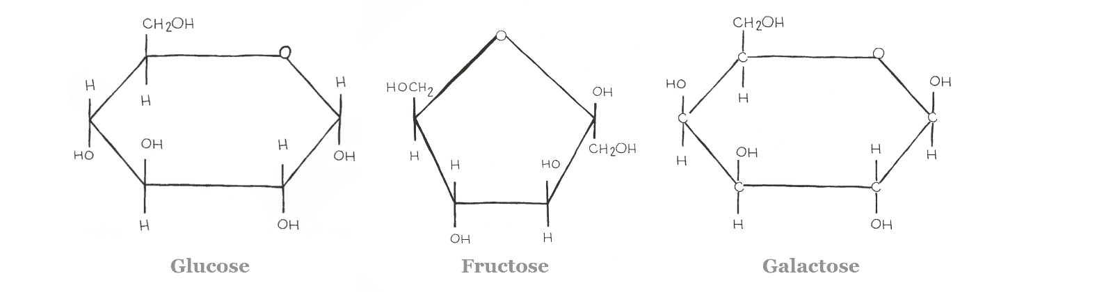 Diagram - Glucose, Fructose, Galactose - Isomers