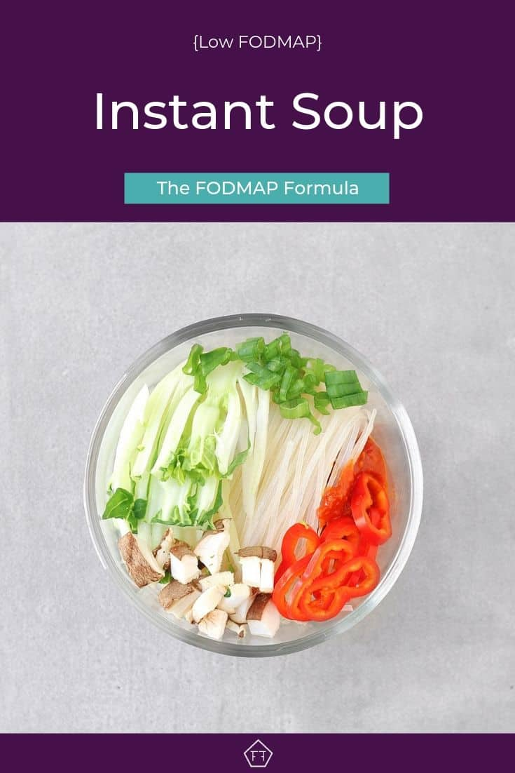Low FODMAP Instant Soup - Pinterest 2