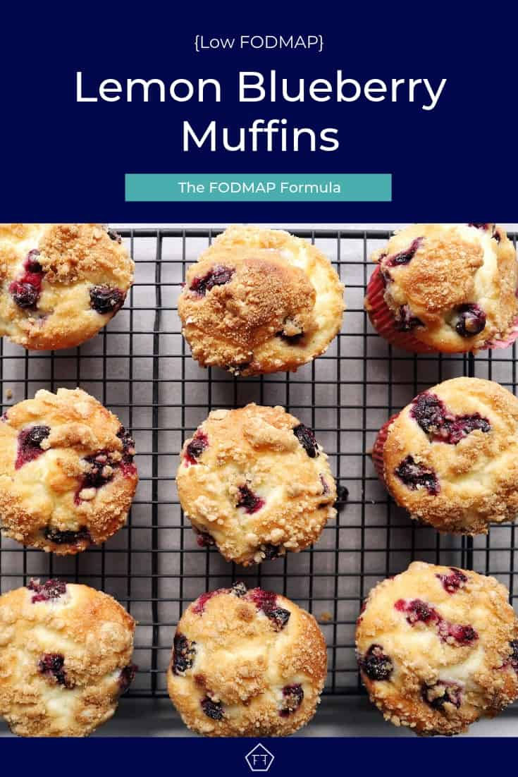 low FOMDAP lemon blueberry muffins - Pinterest 6