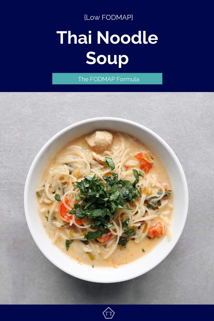 Low FODMAP Thai Noodle Soup in Bowl - 735 x 1102
