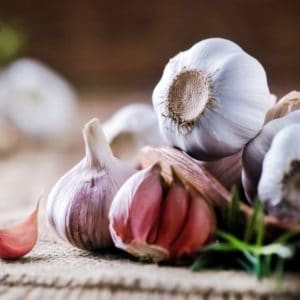 Why is garlic-infused oil low FODMAP?